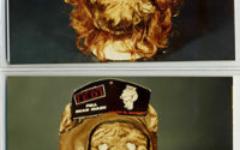 Bing Harris Sargood masks