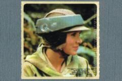 Kelloggs Sticker - Princess Leia