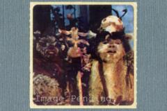 Kelloggs Sticker - Chief Chirpa, Logray